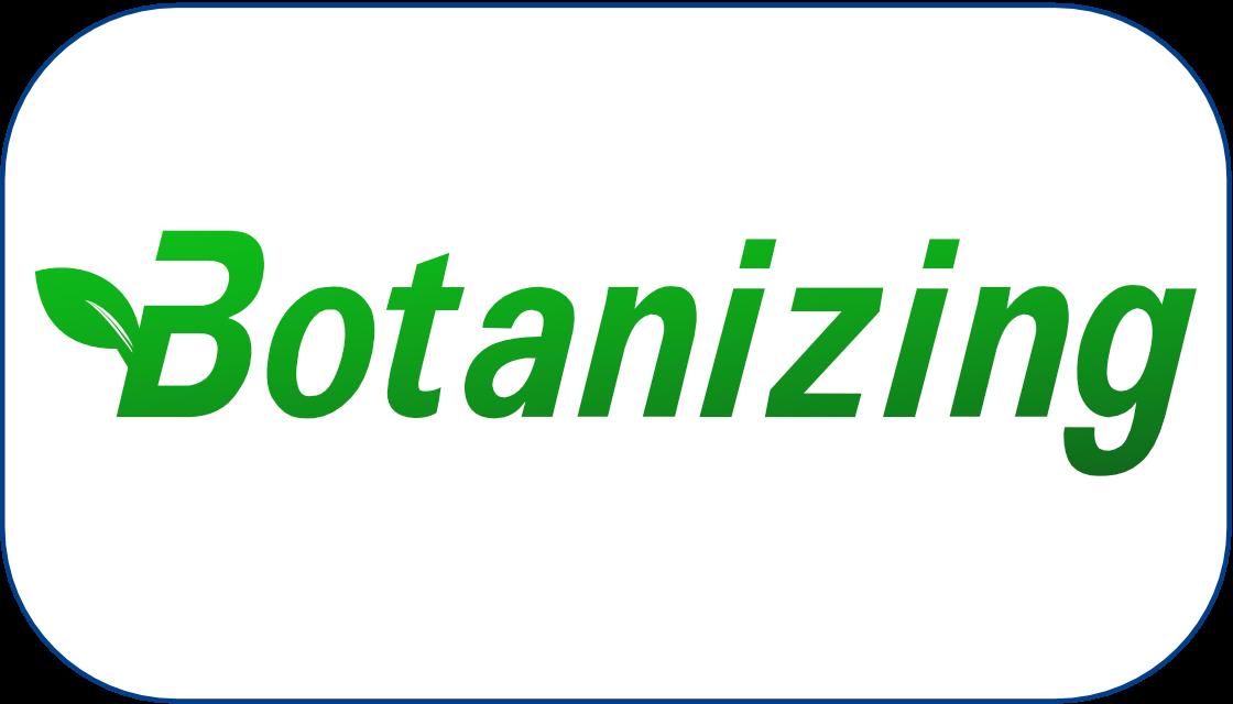 Logo Design Sample 6